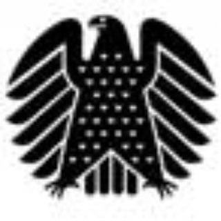Zu möglichen Manipulationen der Medien am Wählerverhalten bei der Bundestagswahl 2013 - FDP, AfD, SPD, CDU